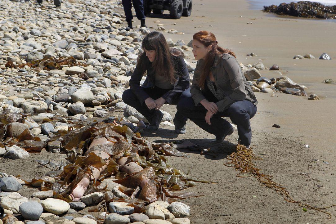Patrick, Grace (Amanda Righetti, r.) und Teresa (Robin Tunney, l.) müssen den Tod einer jungen Frau aufklären, deren Leiche an den Strand einer In... - Bildquelle: Warner Brothers Entertainment Inc.