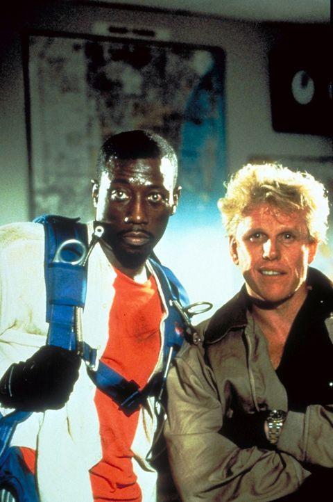 Weil niemand seiner Vermutung Glauben schenken will, versucht Pete Nessip (Wesley Snipes, l.) im Alleingang, dem Gangster Ty Moncrief (Gary Busey, r... - Bildquelle: Paramount Pictures