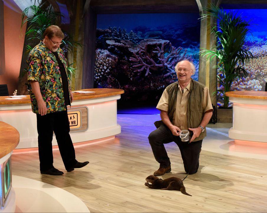 Dr Wolf mit Jürgen von der Lippe und Otter - Bildquelle: Martin Rottenkolber