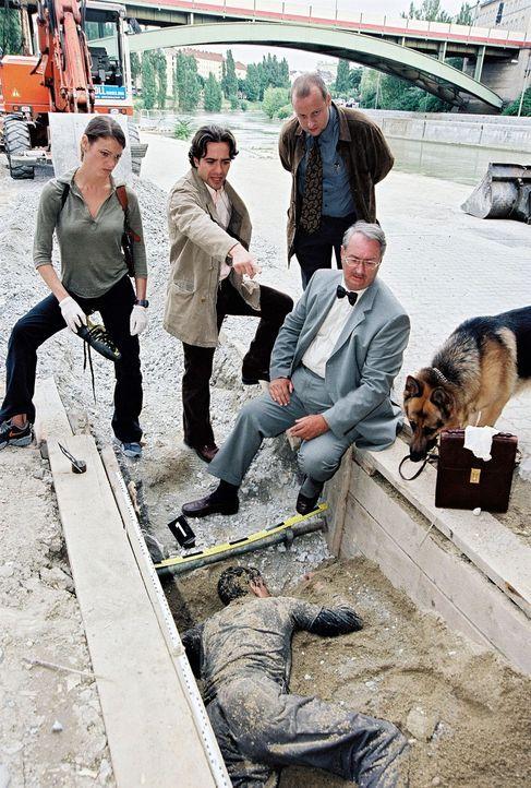 V.l.n.r.: Niki (Elke Winkens), Marc (Alexander Pschill), Kunz (Martin Weinek) und Dr. Graf (Gerhard Zemann) versuchen nach dem Leichenfund Spuren zu... - Bildquelle: Sat.1