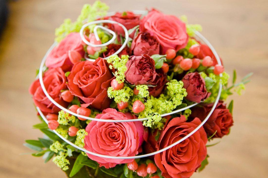 Jede Frau träumt von der perfekten Hochzeit, aber eigentlich nicht mit einem vollkommen fremden Mann an der Seite ... - Bildquelle: Benedikt Müller SAT.1