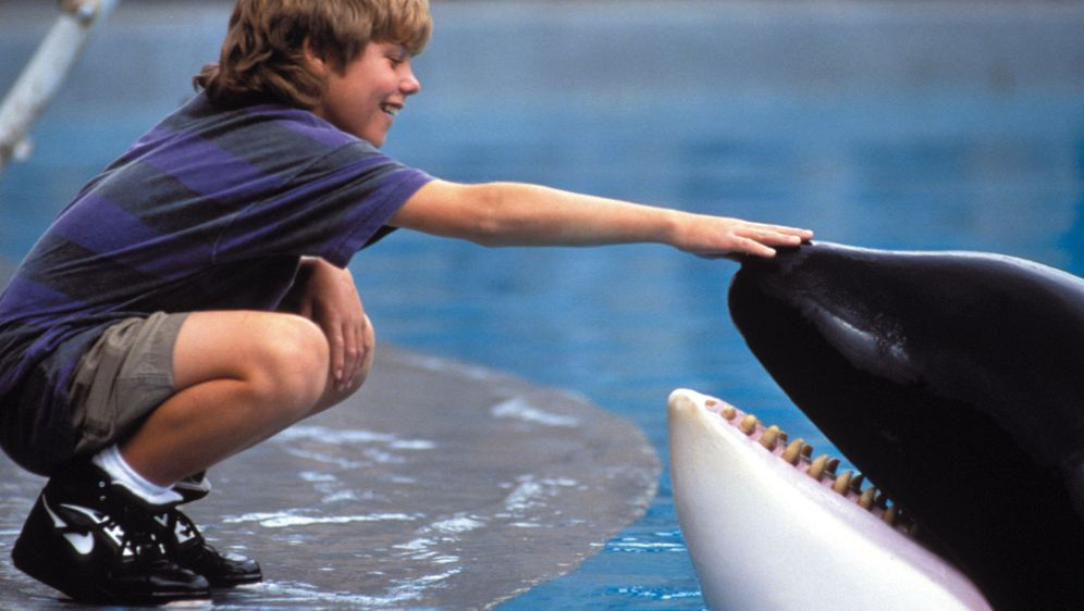 Free Willy - Ruf der Freiheit - Bildquelle: Warner Bros.