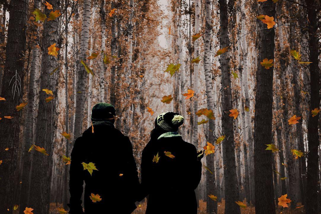 Paar im Herbst - Bildquelle: Pixabay