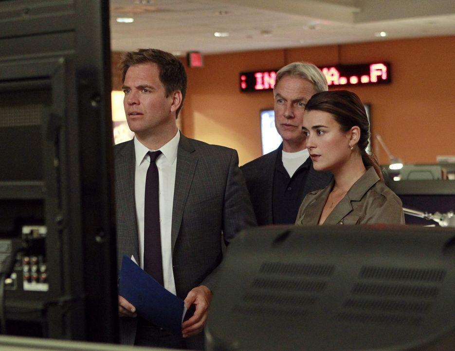 Bei den Ermittlungen in ihrem neuen Fall, machen sie eine schockierende Entdeckung: DiNozzo (Michael Weatherly, l.), Gibbs (Mark Harmon, M.) und Ziv... - Bildquelle: CBS Television