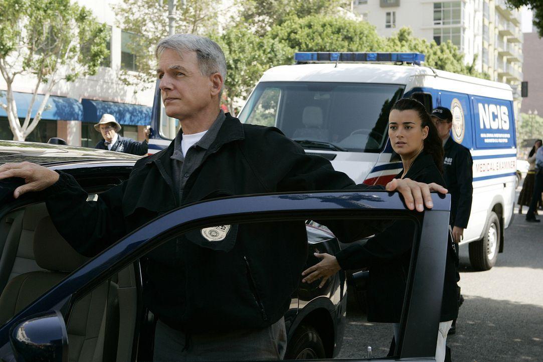 Sind geschockt, als sie Tonys Wagen durch die Luft fliegen sehen: Gibbs (Mark Harmon, 2.v.l.), Ziva (Cote de Pablo, 2.v.r.) und Ducky (David McCallu... - Bildquelle: CBS Television