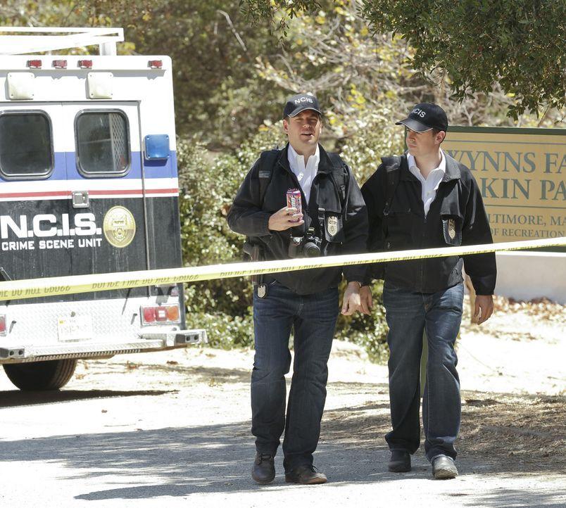 Untersuchen einen neuen Mordfall: Tony (Michael Weatherly, l.) und McGee (Sean Murray, r.) ... - Bildquelle: CBS Television
