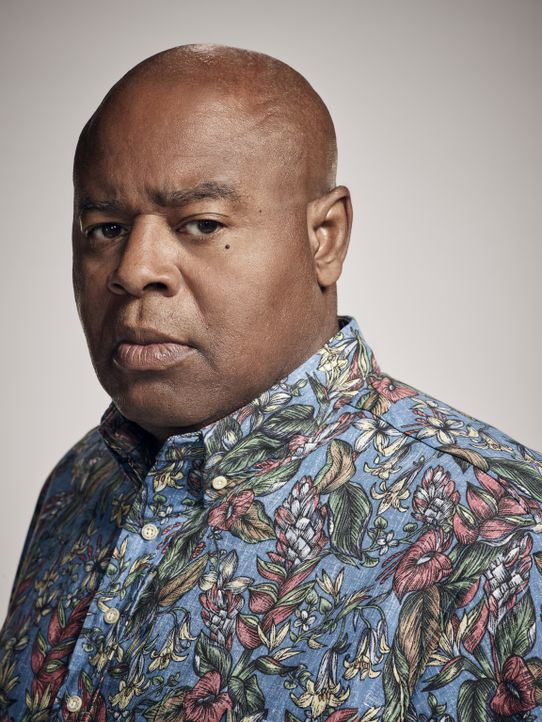 (8. Staffel) - Der aus Chicago stammende Lou Grover (Chi McBride), der ursprünglich als Kapitän des SWAT-Teams der Honolulu Police Department tätig... - Bildquelle: Justin Stephens 2017 CBS Broadcasting Inc. All Rights Reserved.