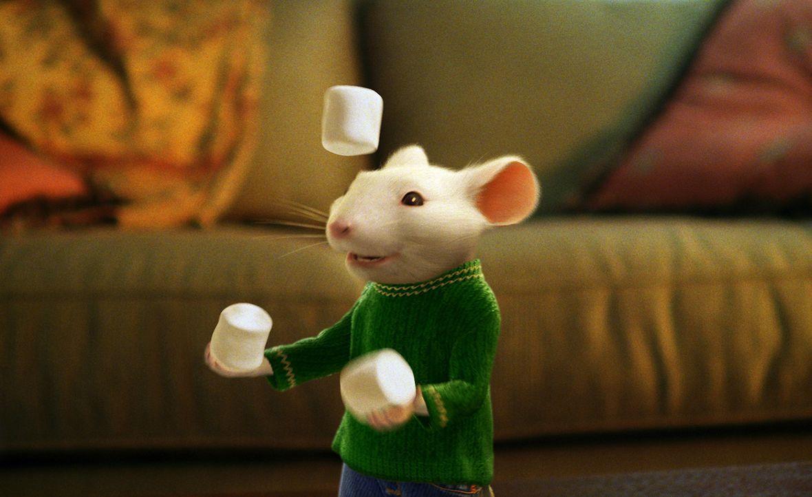 Stuart Little, eine kleine Maus, ist ein Ass beim Bau von Modellflugzeugen. Er fährt mit dem eigenen Auto zur Schule und hat es sogar in die Fußball... - Bildquelle: 2003 Sony Pictures Television International. All Rights Reserved.