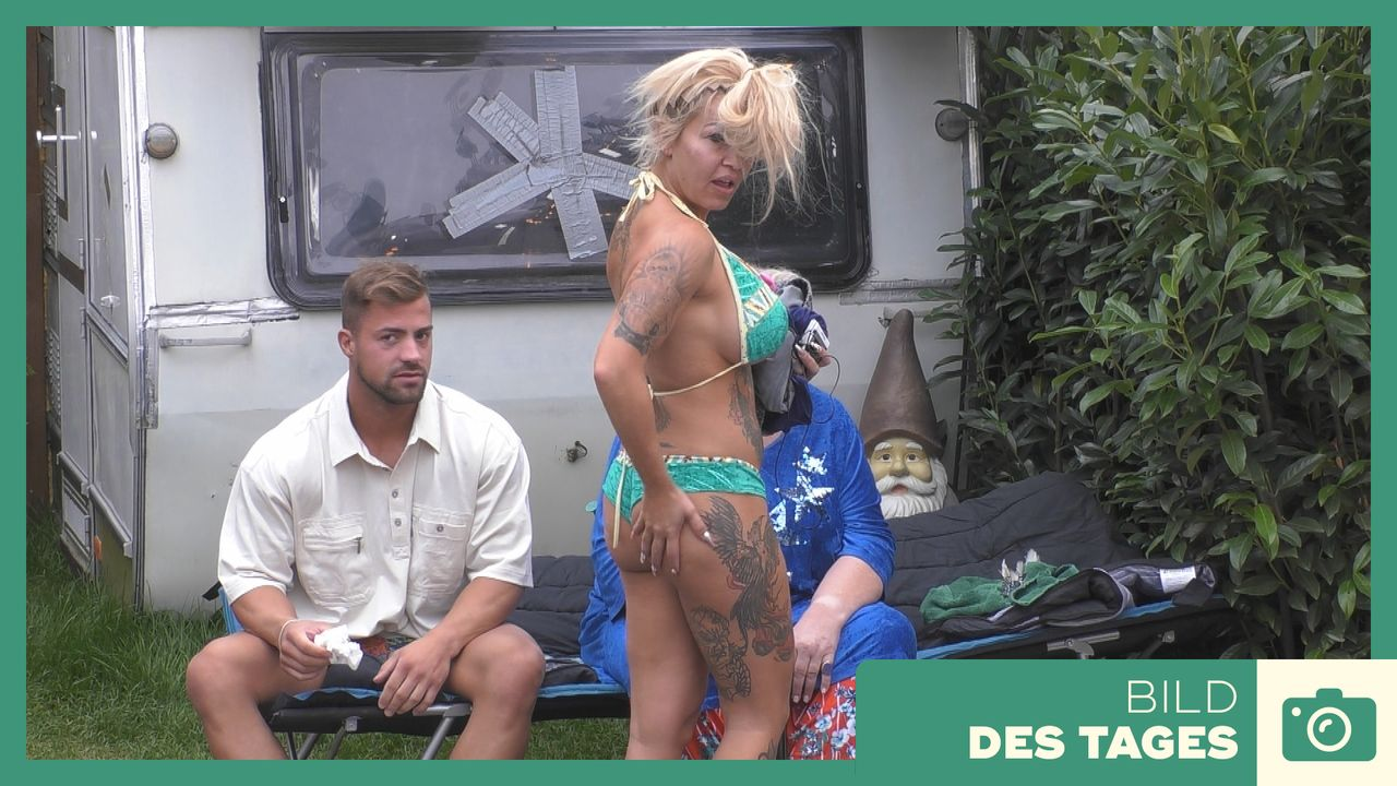 """Promi Big Brother"" 2019: Ginger Popo-Check - Tag 1 - Bildquelle: SAT.1"