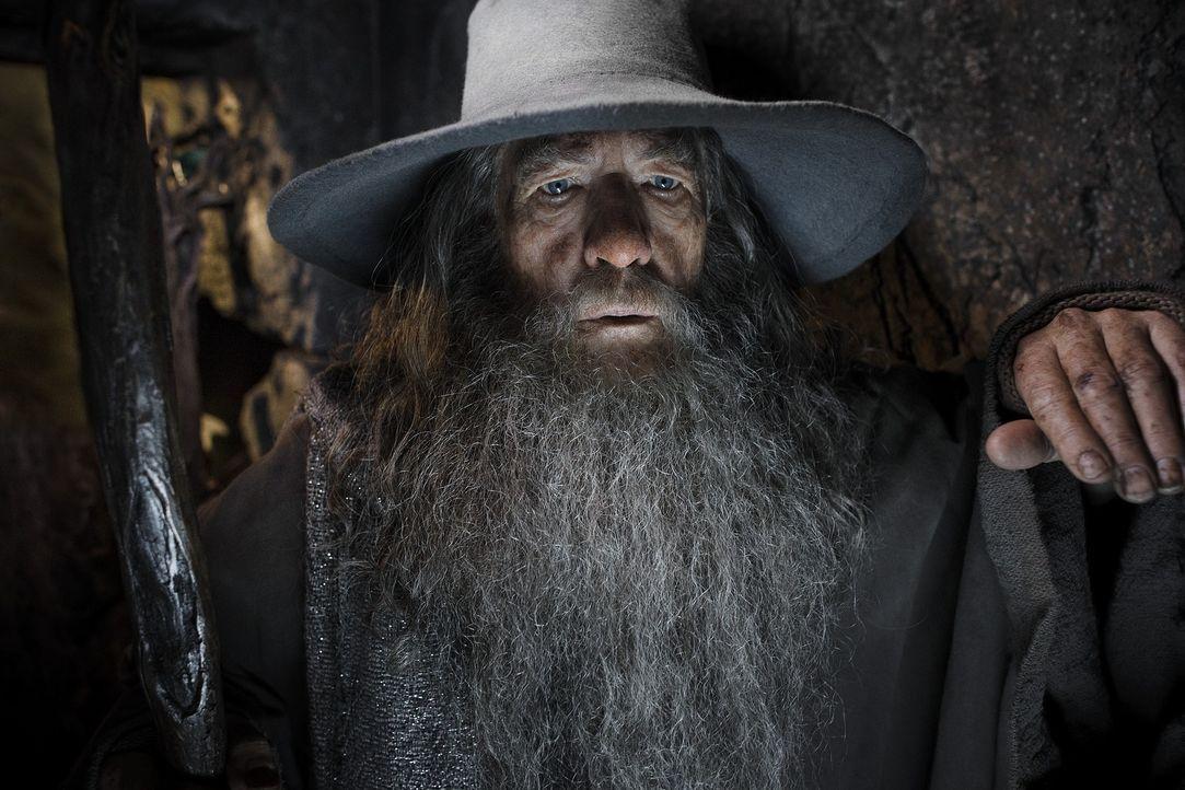 Gandalfs (Ian McKellen) Plan geht auf: Er kann den Zwerg Thorin Eichenschild und den Hobbit Bilbo davon überzeugen, gegen den bösen Drachen Smaug in... - Bildquelle: 2013 METRO-GOLDWYN-MAYER PICTURES INC. and WARNER BROS. ENTERTAINMENT INC.