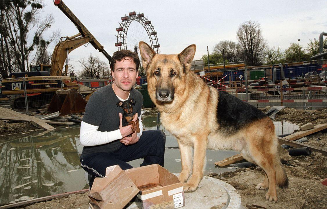 Marc (Alexander Pschill) und sein Gefährte Rex finden in einer Baugrube einen Welpen. - Bildquelle: Sat.1