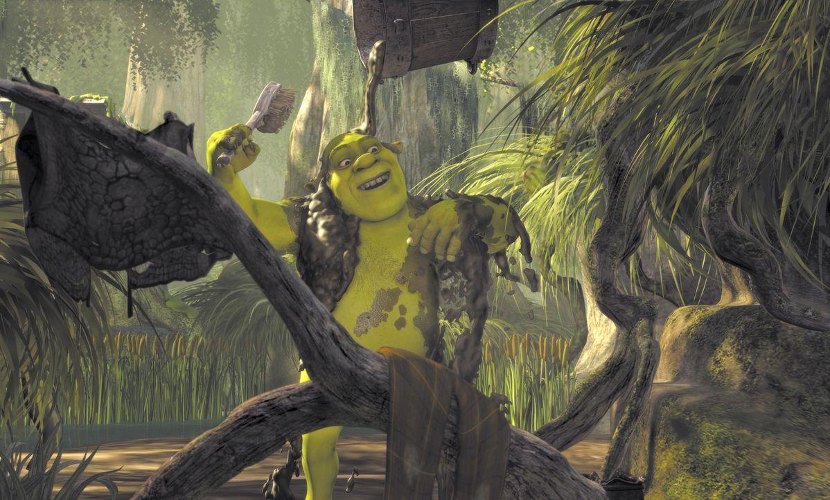 Es gibt kaum etwas schöneres als ein richtiges Schlammbad - zumindest für Oger Shrek ... - Bildquelle: TM &   2001 DreamWorks L.L.C.