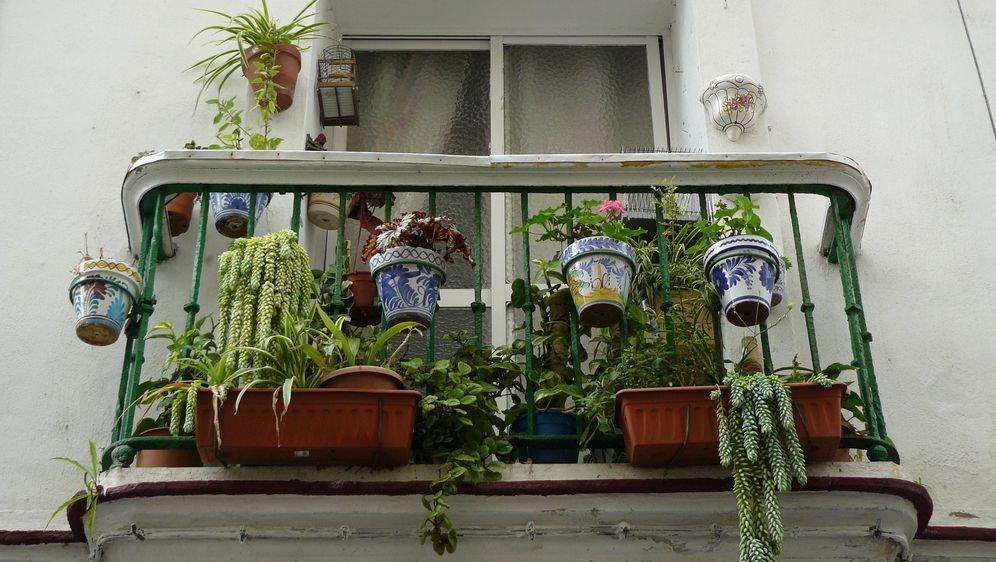 Balkon Einrichten Ideen Zur Verschonerung Sat 1 Ratgeber