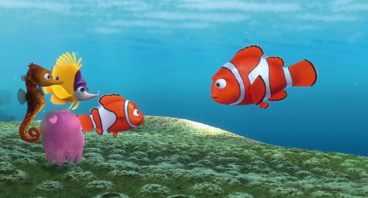 Nemos erster Schultag: Marlin (r.) hält seinem Sohn (2.v.r.) eine Standpauke, da der sich mit Schulkameraden von der Klasse entfernt hat ? - Bildquelle: Walt Disney Pictures