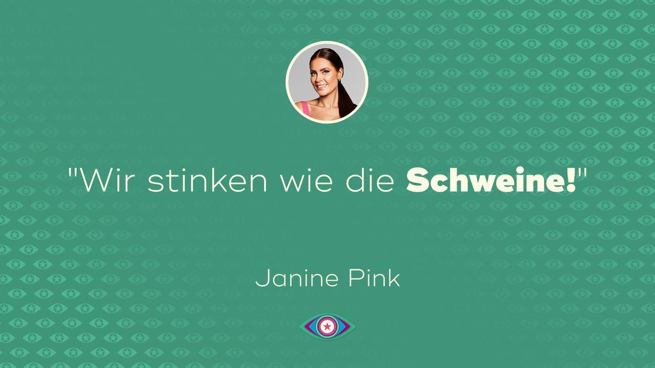 Tag 2: Janine Pink - Schweine