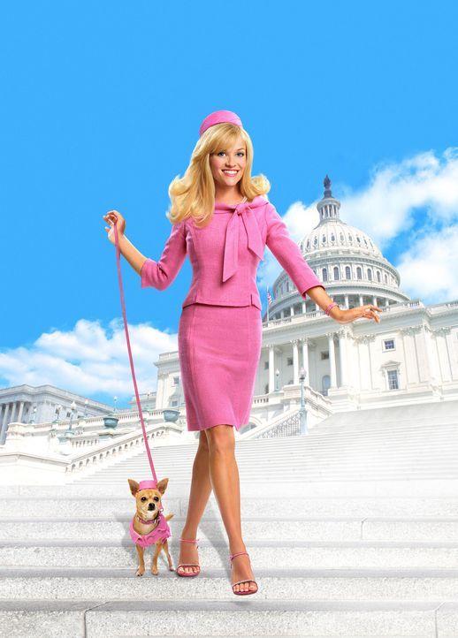 Natürlich Blond 2 mit Reese Witherspoon - Bildquelle: Metro-Goldwyn-Mayer (MGM)